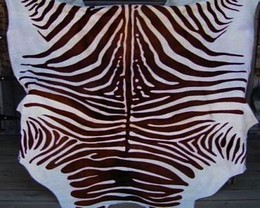 Zebra Cowhide Spinal Brown-White
